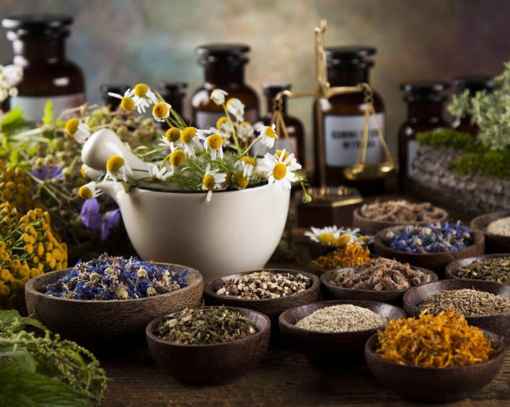 herbs for website