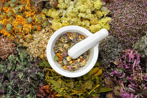 About Healing Mountain Organics | Lovers Of Natural Health